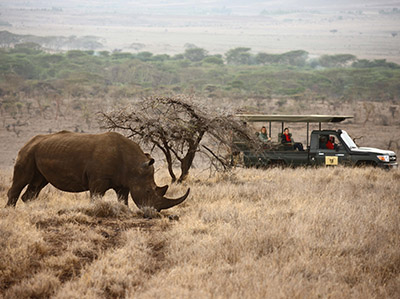 Authentic Take on Kenya and Tanzania Wilderness